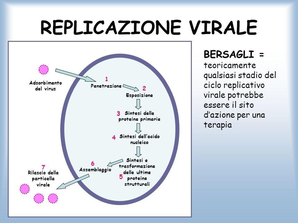 MECCANISMO D'AZIONE ANTIVIRALI I meccanismi dei vari farmaci variano molto Talvolta il farmaco è attivato da enzimi cellulari prima di attivare l'inibizione della replicazione virale I farmaci più selettivi sono attivati da enzimi codificati dal virus nella cellula infettata Classi di farmaci A.Analoghi dei nucleosidi B.Analoghi dei nucleotidi C.Inibitori della trascrittasi inversa D.Inibitori delle proteasi E.Inibitori delle neuroaminidasi
