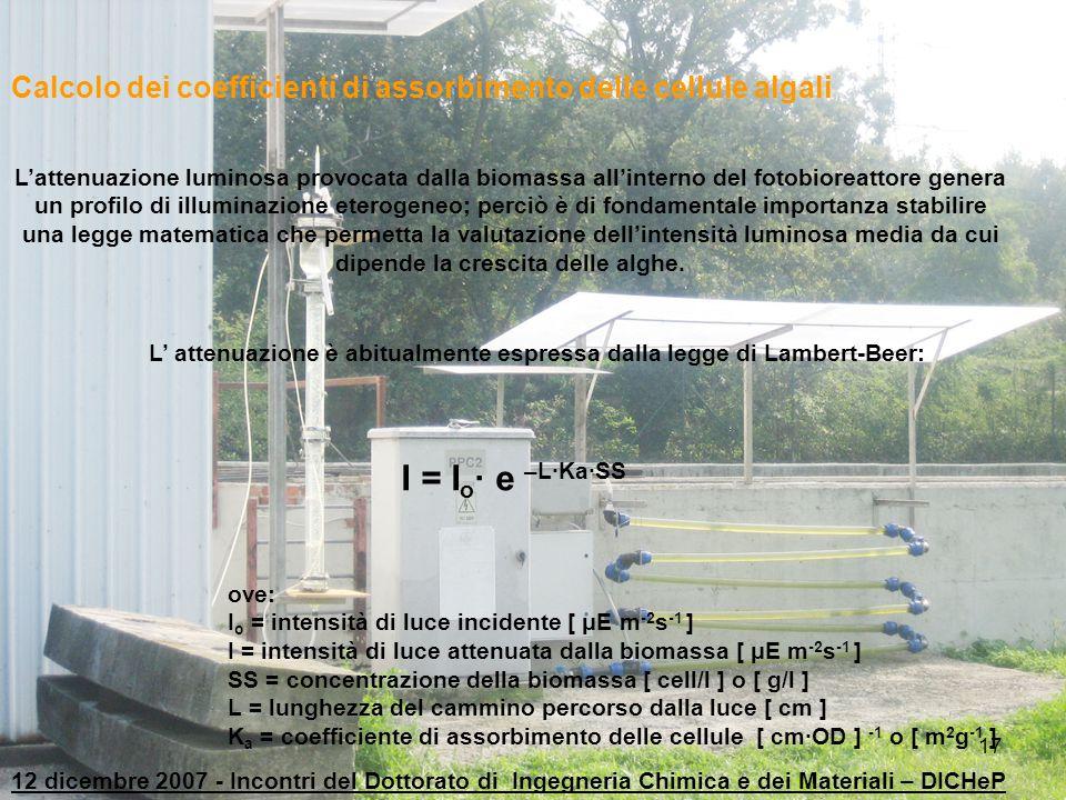 17 L'attenuazione luminosa provocata dalla biomassa all'interno del fotobioreattore genera un profilo di illuminazione eterogeneo; perciò è di fondame