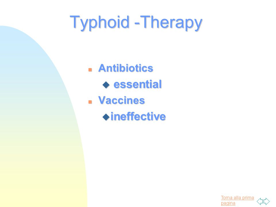 Torna alla prima pagina Typhoid -Therapy n Antibiotics u essential n Vaccines u ineffective