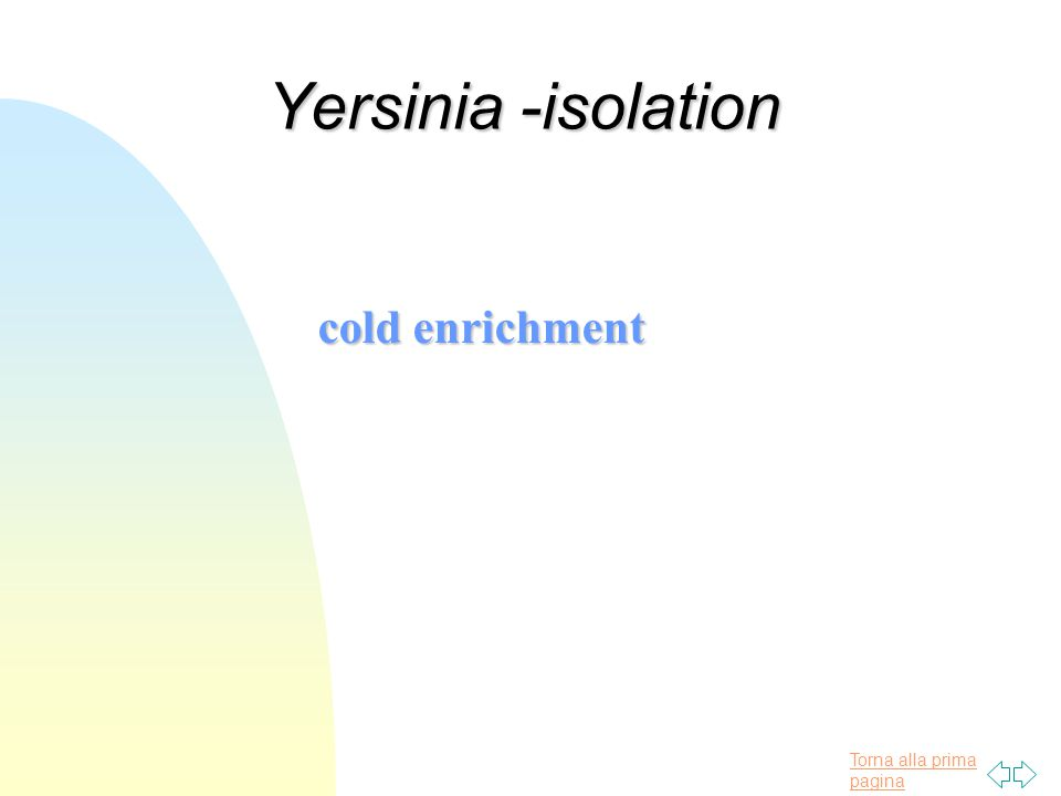 Torna alla prima pagina Yersinia -isolation cold enrichment