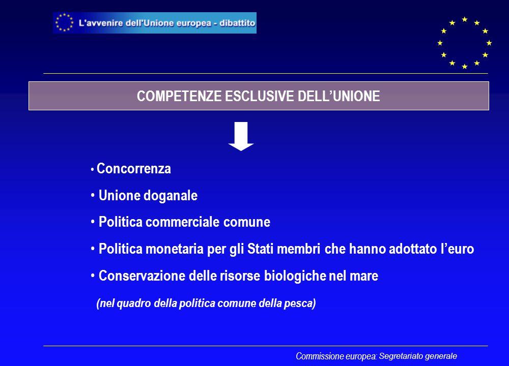 Segretariato generale Concorrenza Unione doganale Politica commerciale comune Politica monetaria per gli Stati membri che hanno adottato l'euro Conser