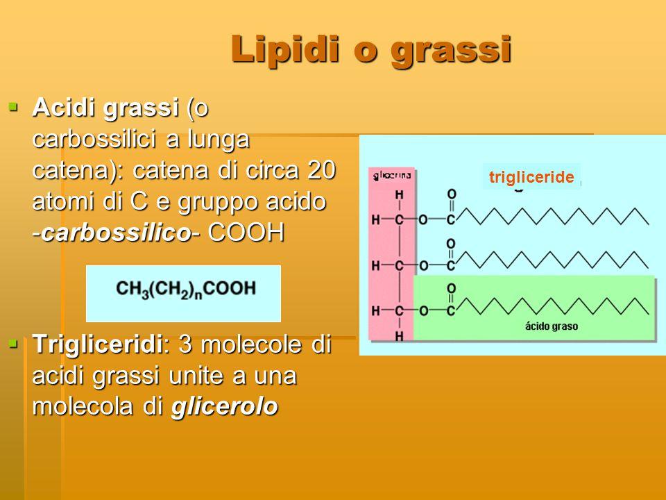 Lipidi o grassi  Acidi grassi (o carbossilici a lunga catena): catena di circa 20 atomi di C e gruppo acido -carbossilico- COOH  Trigliceridi: 3 mol
