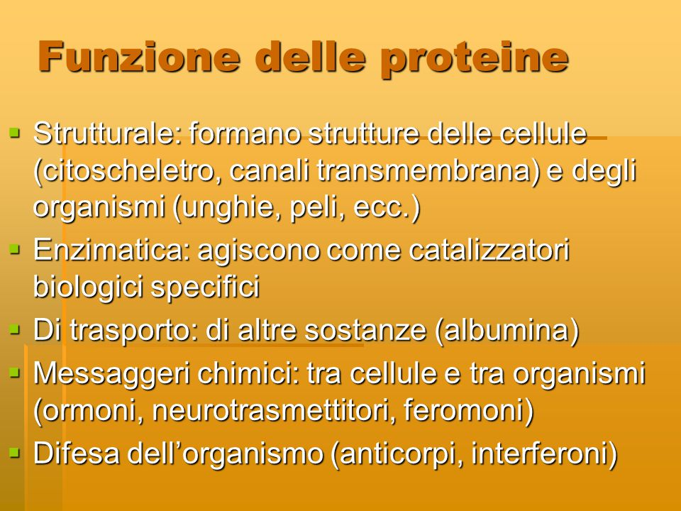 Funzione delle proteine  Strutturale: formano strutture delle cellule (citoscheletro, canali transmembrana) e degli organismi (unghie, peli, ecc.) 