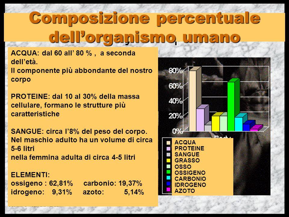 Composizione percentuale dell'organismo umano ACQUA PROTEINE SANGUE GRASSO OSSO OSSIGENO CARBONIO IDROGENO AZOTO ACQUA: dal 60 all' 80 %, a seconda de