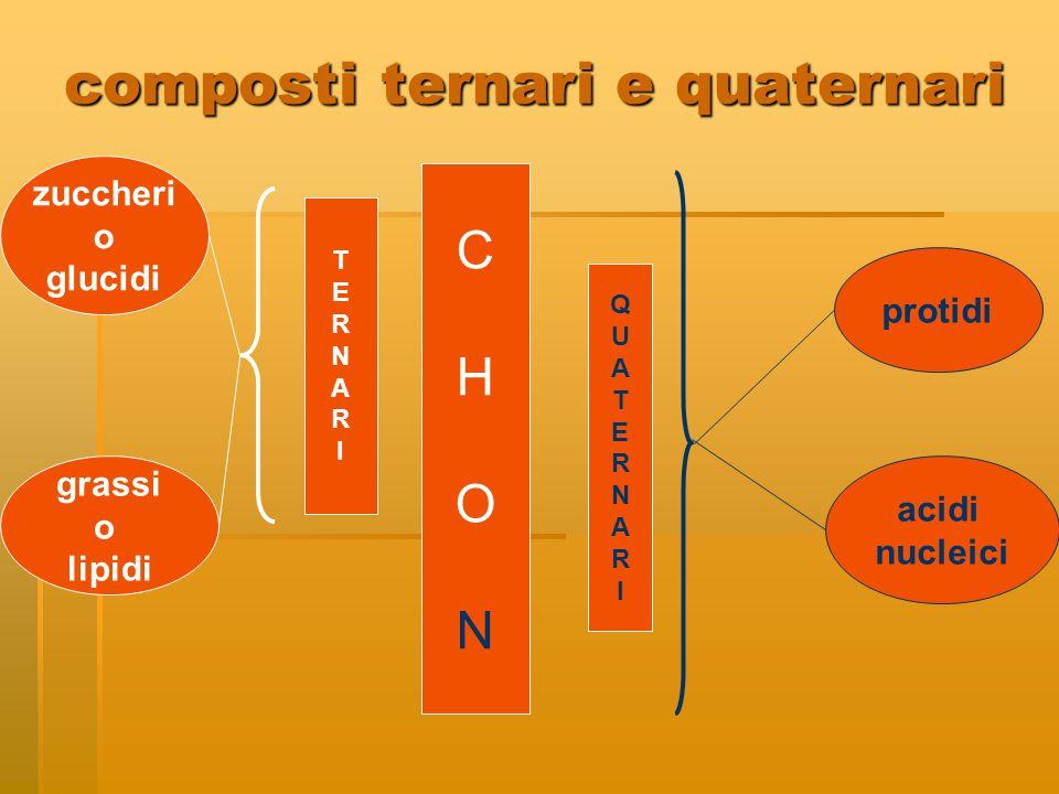 composti ternari e quaternari CHONCHON zuccheri o glucidi grassi o lipidi protidi acidi nucleici TERNARITERNARI QUATERNARIQUATERNARI