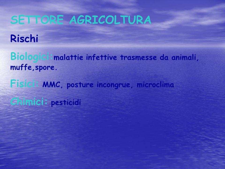 SETTORE AGRICOLTURA Rischi Biologici: malattie infettive trasmesse da animali, muffe,spore. Fisici: MMC, posture incongrue, microclima Chimici: pestic