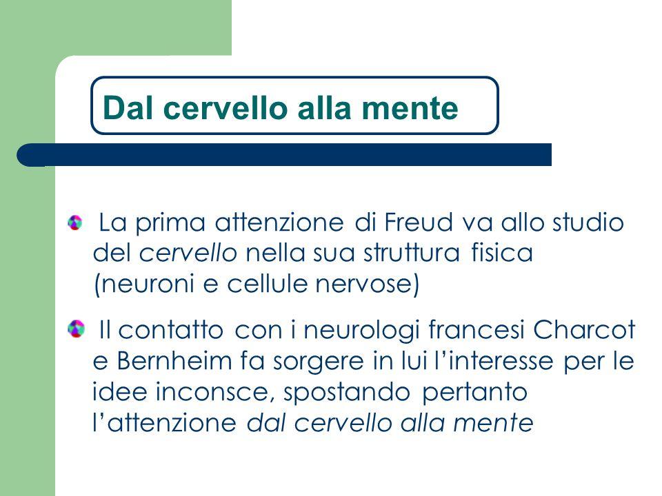 La prima attenzione di Freud va allo studio del cervello nella sua struttura fisica (neuroni e cellule nervose) Il contatto con i neurologi francesi C