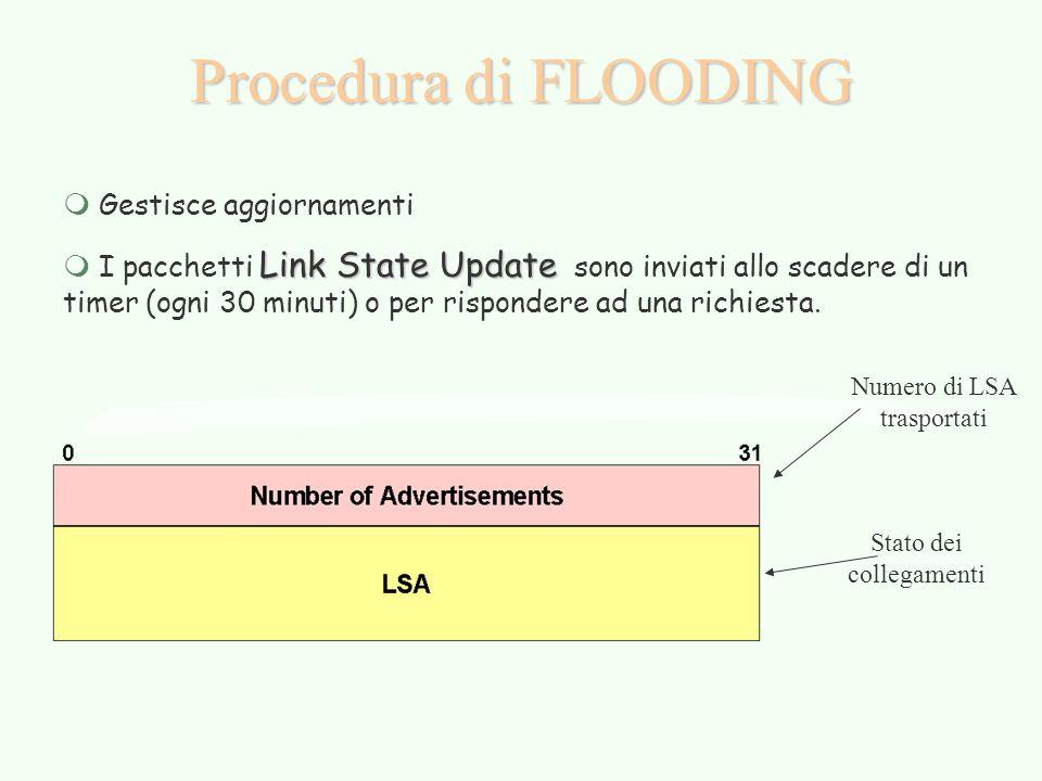 Procedura di FLOODING m Gestisce aggiornamenti Link State Update m I pacchetti Link State Update sono inviati allo scadere di un timer (ogni 30 minuti) o per rispondere ad una richiesta.