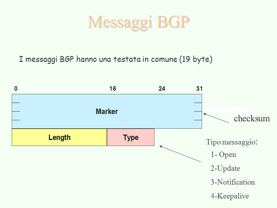 Messaggi BGP I messaggi BGP hanno una testata in comune (19 byte) checksum Tipo messaggio : 1- Open 2-Update 3-Notification 4-Keepalive