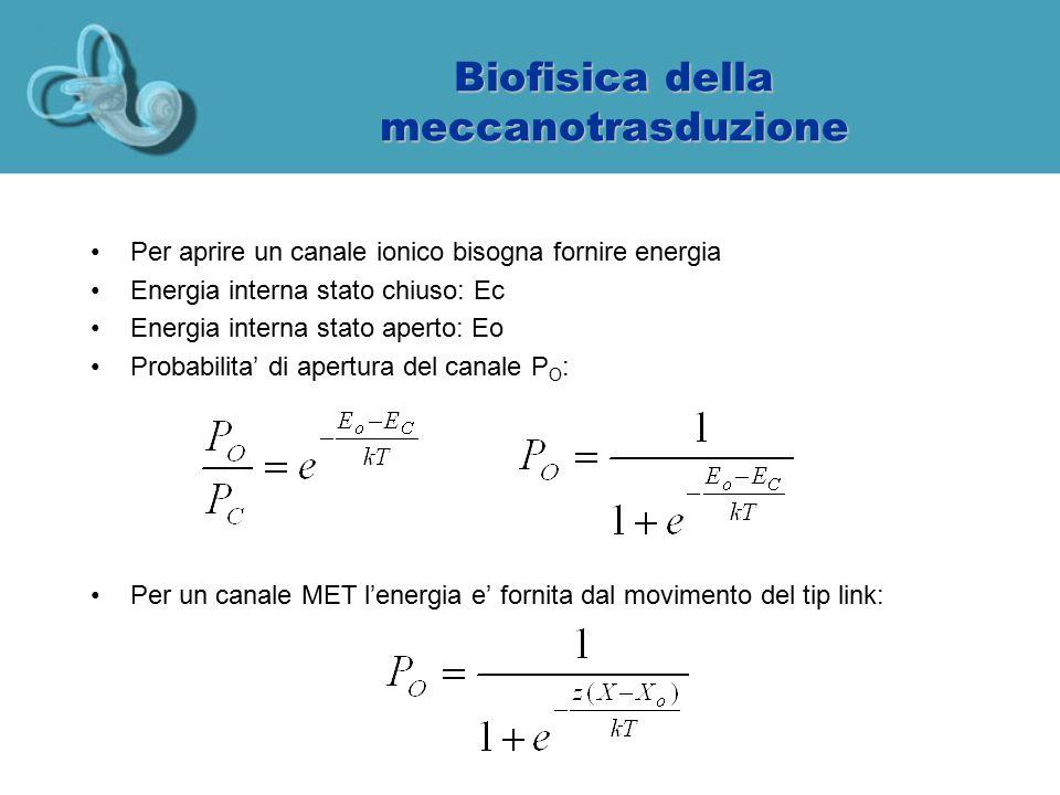 Biofisica della meccanotrasduzione Per aprire un canale ionico bisogna fornire energia Energia interna stato chiuso: Ec Energia interna stato aperto: