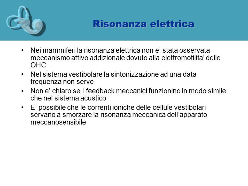 Risonanza elettrica Nei mammiferi la risonanza elettrica non e' stata osservata – meccanismo attivo addizionale dovuto alla elettromotilita' delle OHC