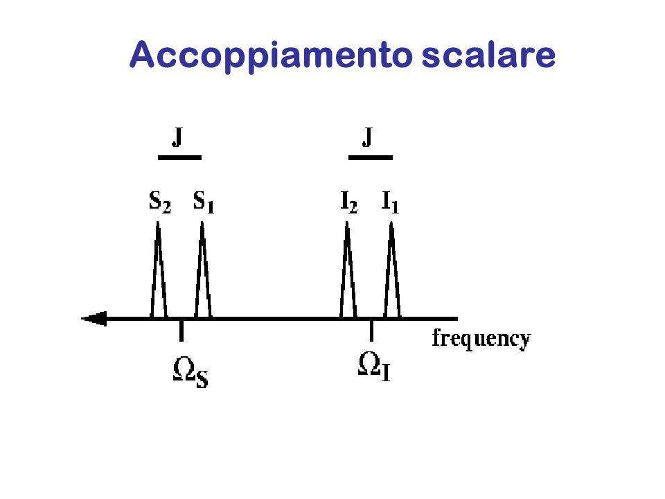 Accoppiamento scalare L'accoppiamento scalare puo' comunque essere osservato attraverso esperimenti NMR bidimensionali, quali il COSY
