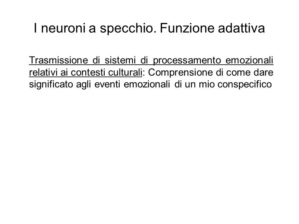 I neuroni a specchio.