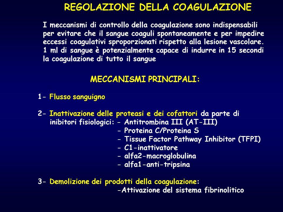REGOLAZIONE DELLA COAGULAZIONE I meccanismi di controllo della coagulazione sono indispensabili per evitare che il sangue coaguli spontaneamente e per
