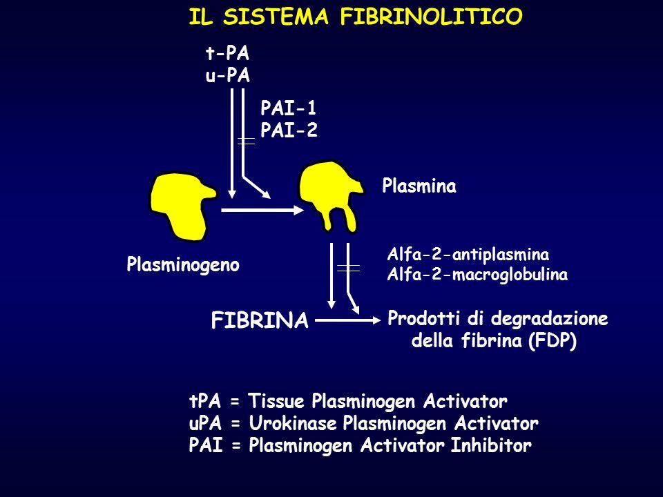 IL SISTEMA FIBRINOLITICO Plasminogeno Plasmina t-PA u-PA PAI-1 PAI-2 FIBRINA Prodotti di degradazione della fibrina (FDP) Alfa-2-antiplasmina Alfa-2-m