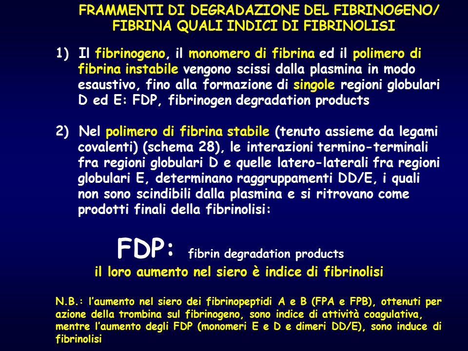 FRAMMENTI DI DEGRADAZIONE DEL FIBRINOGENO/ FIBRINA QUALI INDICI DI FIBRINOLISI 1)Il fibrinogeno, il monomero di fibrina ed il polimero di fibrina inst