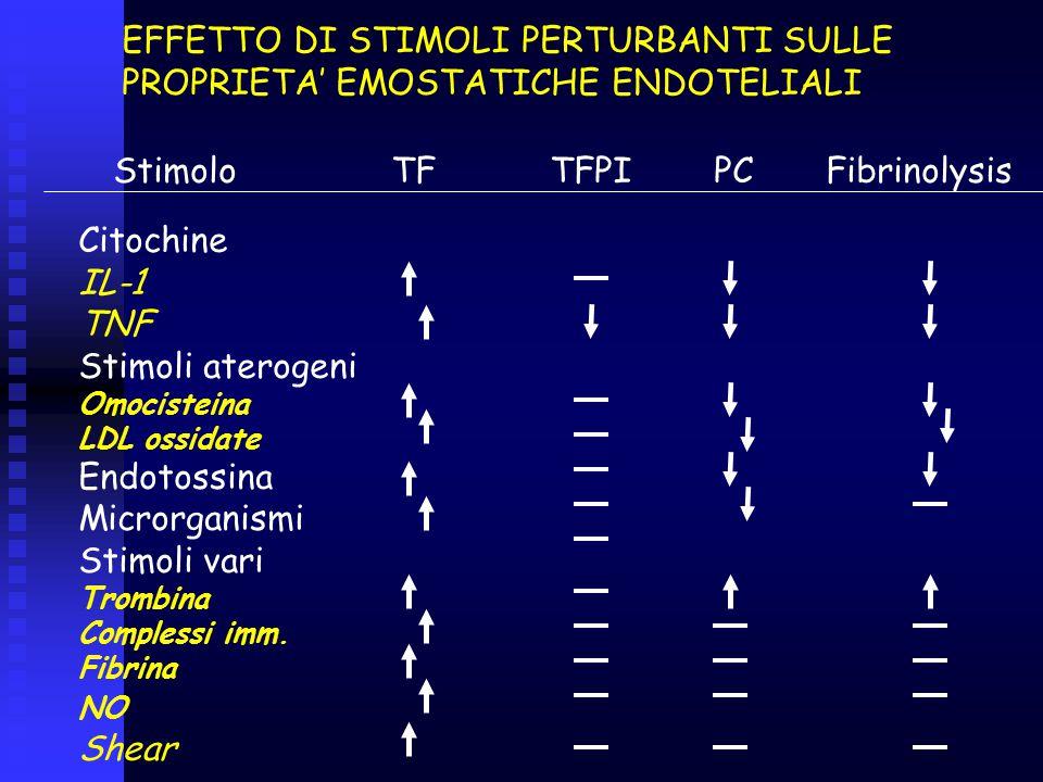 EFFETTO DI STIMOLI PERTURBANTI SULLE PROPRIETA' EMOSTATICHE ENDOTELIALI Stimolo TF TFPI PC Fibrinolysis Citochine IL-1 TNF Stimoli aterogeni Omocistei
