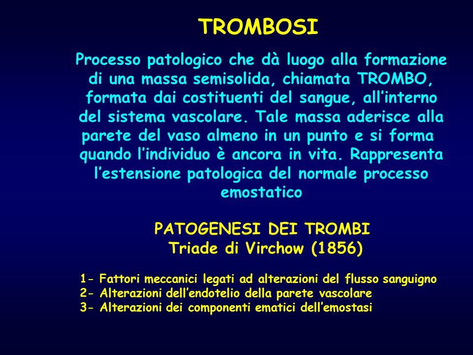 TROMBOSI Processo patologico che dà luogo alla formazione di una massa semisolida, chiamata TROMBO, formata dai costituenti del sangue, all'interno de