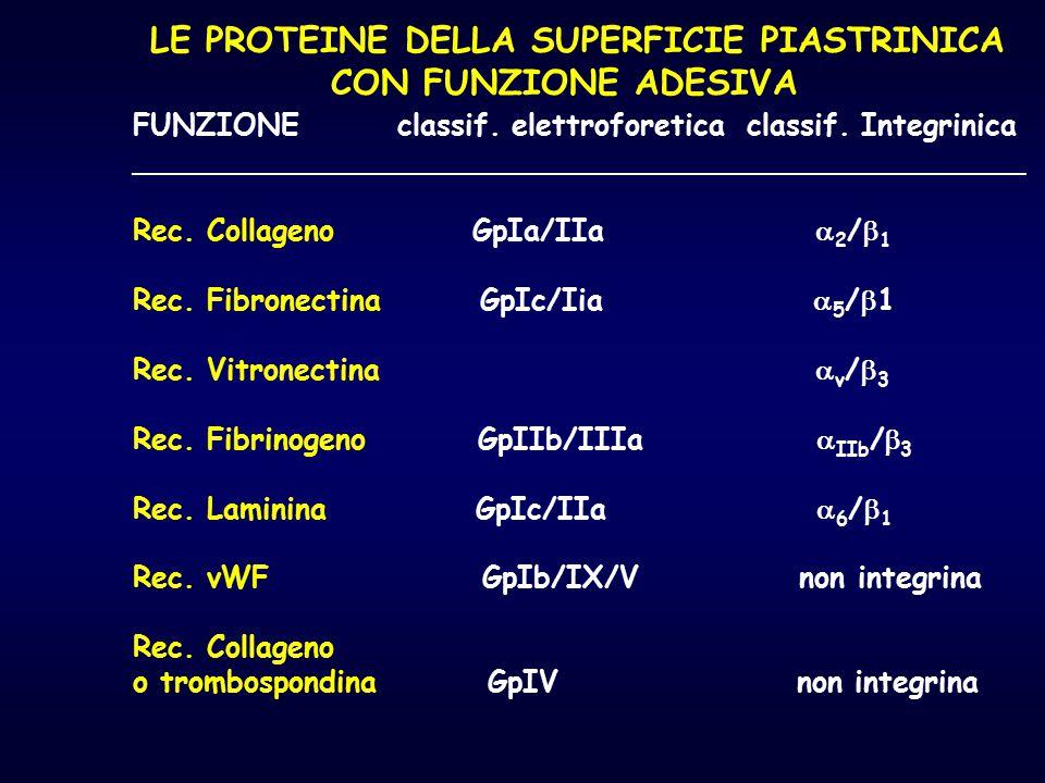 LE PROTEINE DELLA SUPERFICIE PIASTRINICA CON FUNZIONE ADESIVA FUNZIONE classif. elettroforetica classif. Integrinica _________________________________