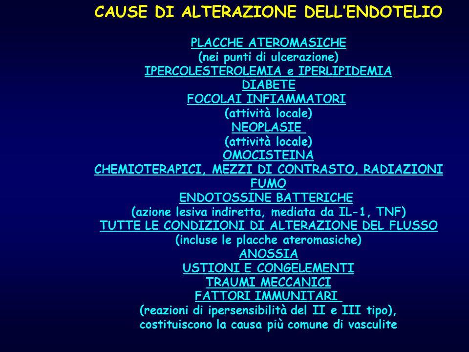 CAUSE DI ALTERAZIONE DELL'ENDOTELIO PLACCHE ATEROMASICHE (nei punti di ulcerazione) IPERCOLESTEROLEMIA e IPERLIPIDEMIA DIABETE FOCOLAI INFIAMMATORI (a