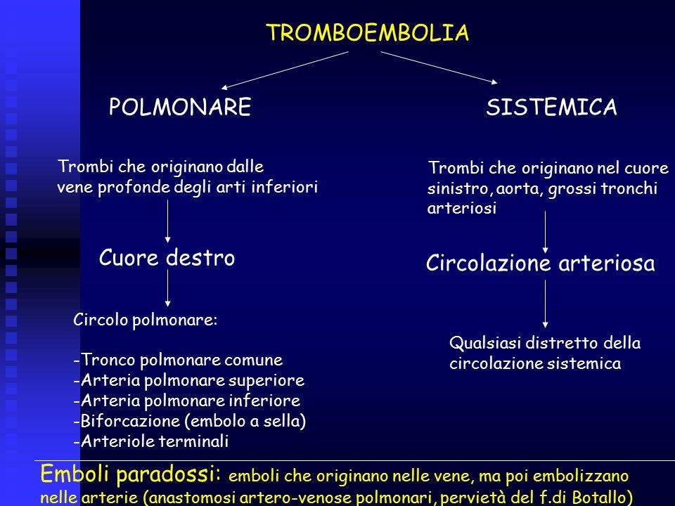 TROMBOEMBOLIA POLMONARE SISTEMICA Trombi che originano dalle vene profonde degli arti inferiori Cuore destro Circolo polmonare: -Tronco polmonare comu