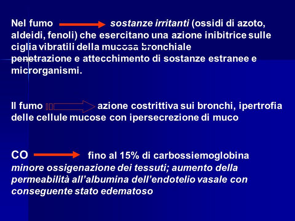 Nel fumo sostanze irritanti (ossidi di azoto, aldeidi, fenoli) che esercitano una azione inibitrice sulle ciglia vibratili della mucosa bronchiale pen