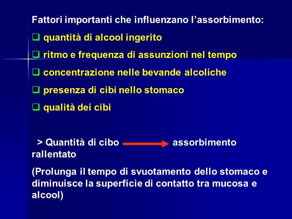 Fattori importanti che influenzano l'assorbimento:  quantità di alcool ingerito  ritmo e frequenza di assunzioni nel tempo  concentrazione nelle be