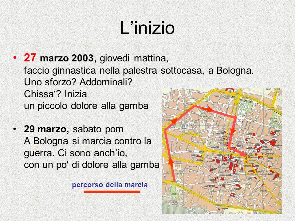 L'inizio 27 marzo 2003, giovedi mattina, faccio ginnastica nella palestra sottocasa, a Bologna.
