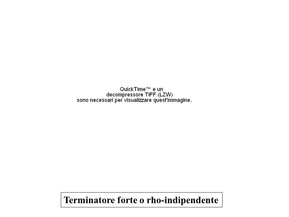 Terminatore forte o rho-indipendente