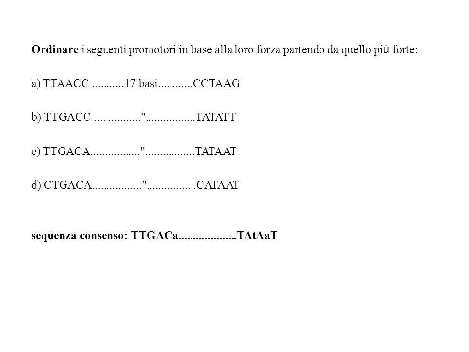 Ordinare i seguenti promotori in base alla loro forza partendo da quello pi ù forte: a) TTAACC...........17 basi............CCTAAG b) TTGACC..........