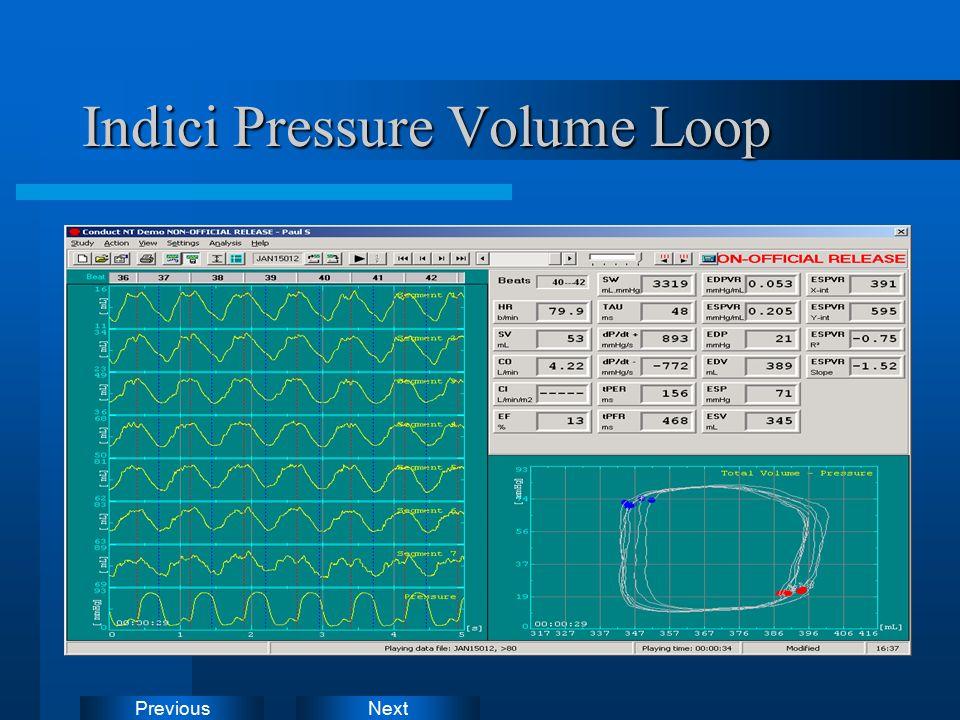 NextPrevious Alcuni dati forniti in tempo reale:  Ees, PRSW, +dP/dt-EDV (indici della contrattilita' del miocardio).