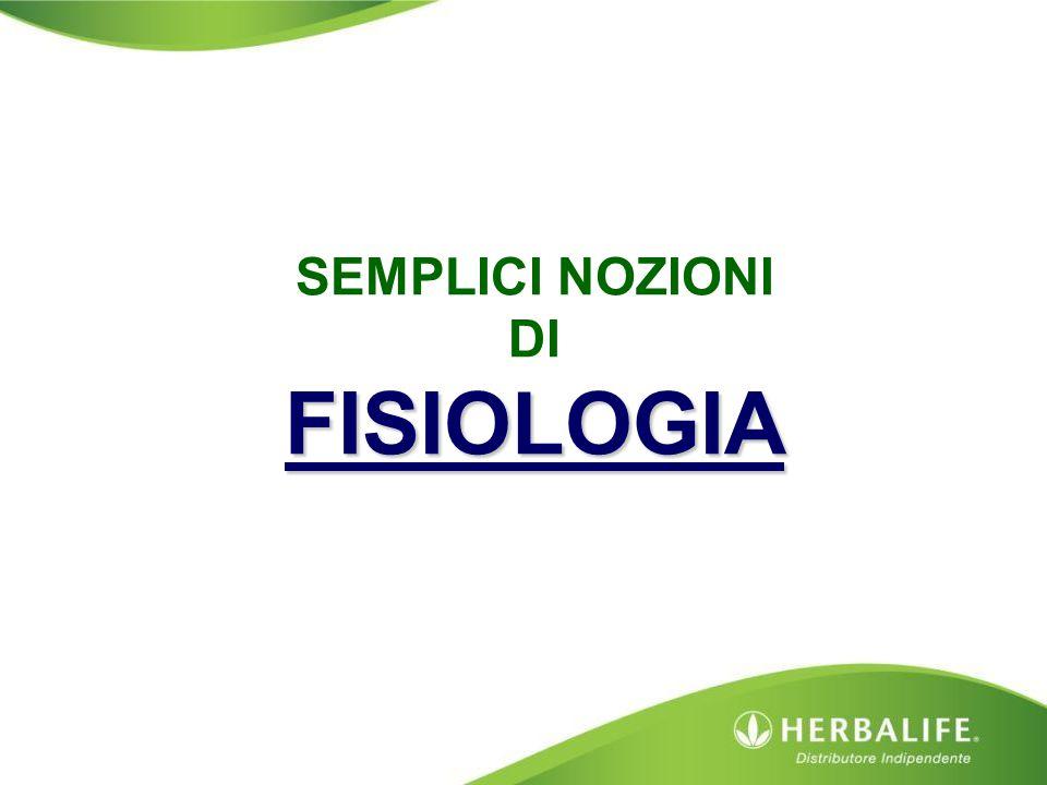 FISIOLOGIA SEMPLICI NOZIONI DI FISIOLOGIA