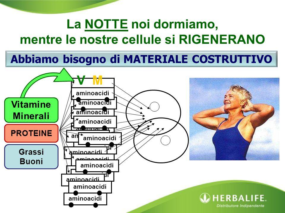 MV aminoacidi Vitamine Minerali PROTEINE Grassi Buoni La NOTTE noi dormiamo, mentre le nostre cellule si RIGENERANO Abbiamo bisogno di MATERIALE COSTR