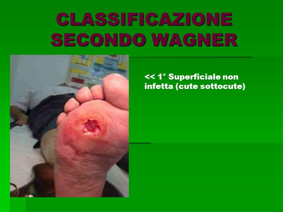 CLASSIFICAZIONE SECONDO WAGNER << 1° Superficiale non infetta (cute sottocute)