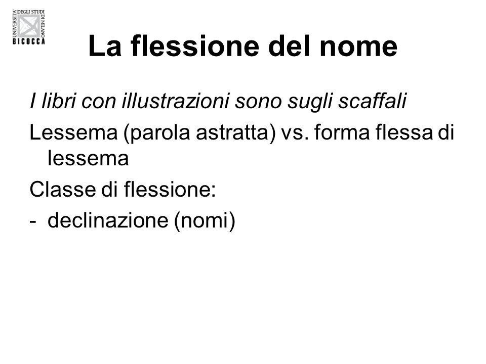 La flessione del nome I libri con illustrazioni sono sugli scaffali Lessema (parola astratta) vs.