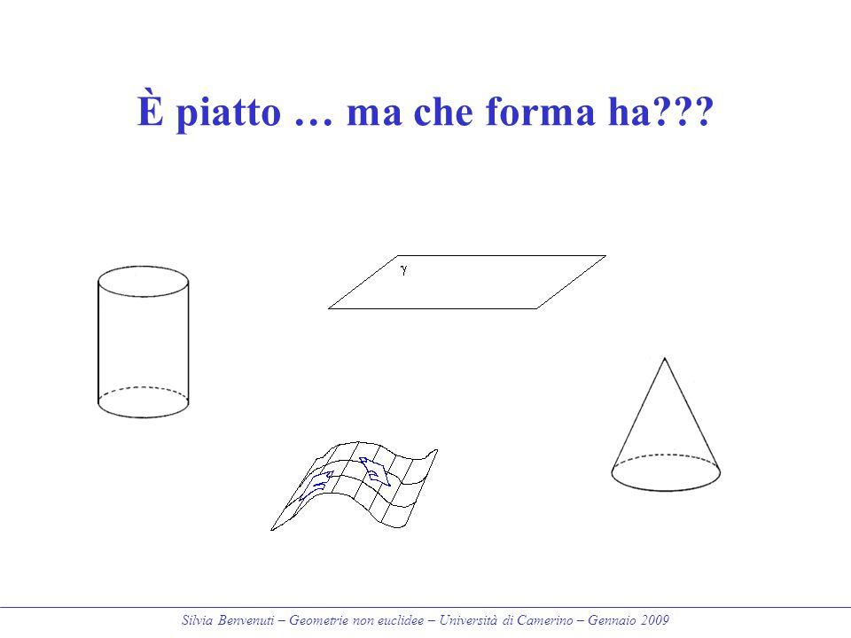 Silvia Benvenuti – Geometrie non euclidee – Università di Camerino – Gennaio 2009 È piatto … ma che forma ha???