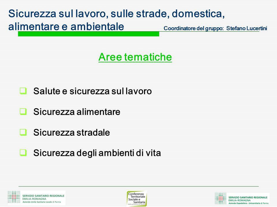 Sicurezza sul lavoro, sulle strade, domestica, alimentare e ambientale Coordinatore del gruppo: Stefano Lucertini Aree tematiche  Salute e sicurezza