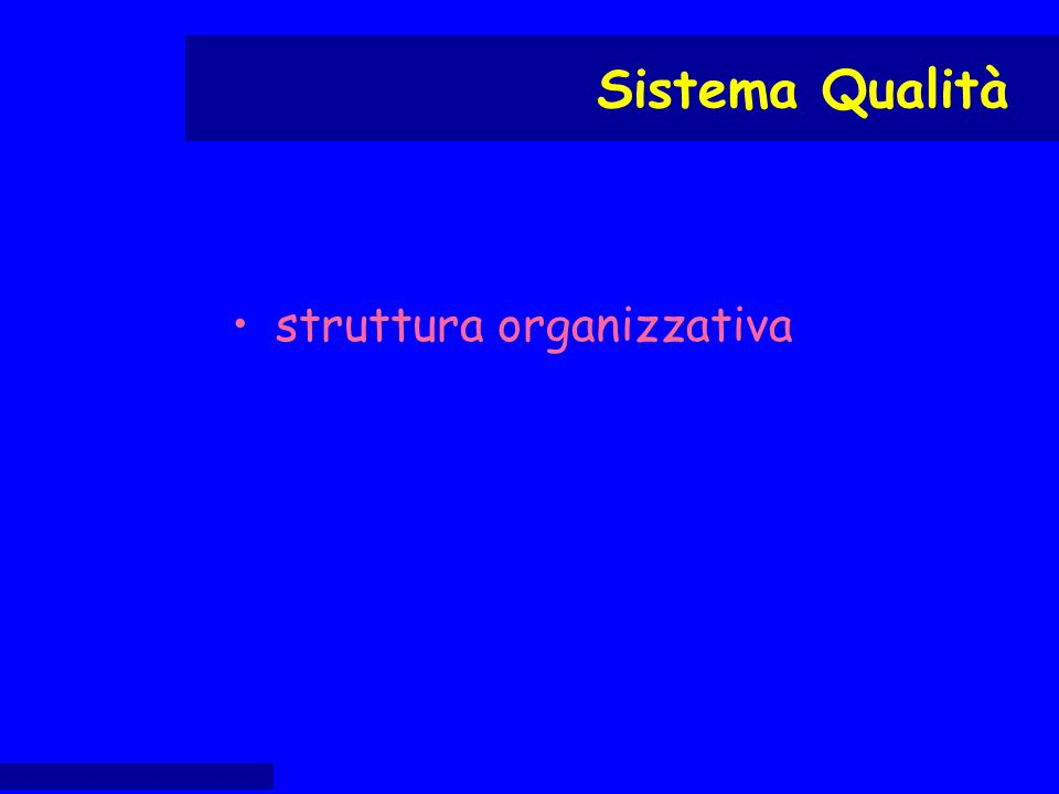 struttura organizzativa Sistema Qualità