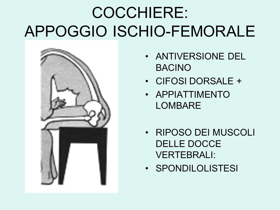 COCCHIERE: APPOGGIO ISCHIO-FEMORALE ANTIVERSIONE DEL BACINO CIFOSI DORSALE + APPIATTIMENTO LOMBARE RIPOSO DEI MUSCOLI DELLE DOCCE VERTEBRALI: SPONDILO