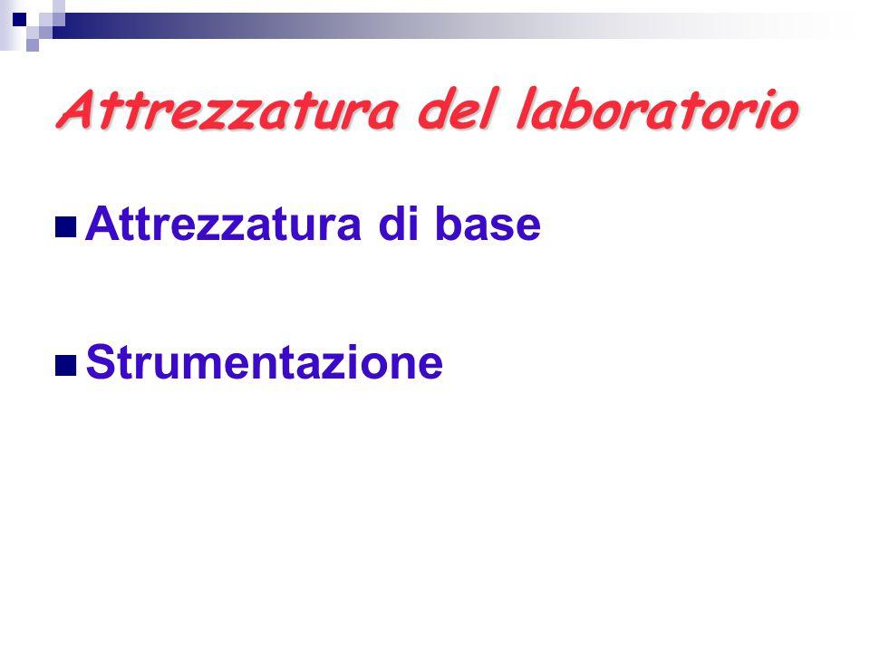 Attrezzatura del laboratorio Attrezzatura di base Strumentazione