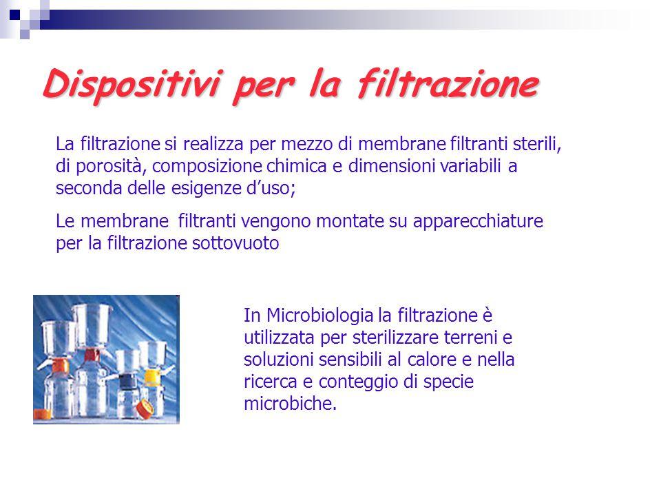 Dispositivi per la filtrazione La filtrazione si realizza per mezzo di membrane filtranti sterili, di porosità, composizione chimica e dimensioni vari