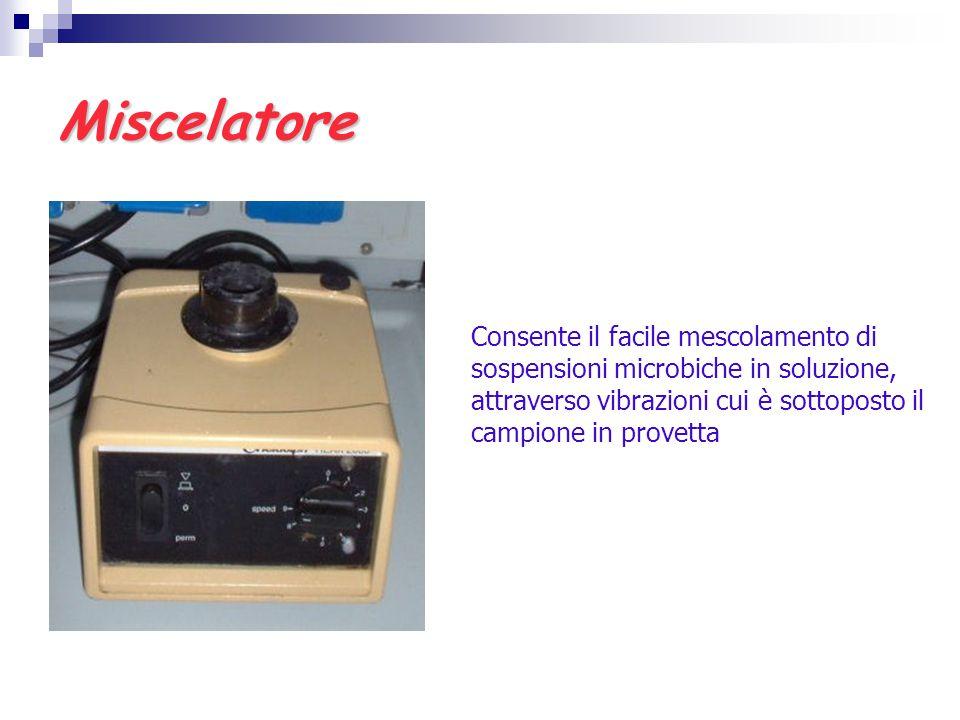 Miscelatore Consente il facile mescolamento di sospensioni microbiche in soluzione, attraverso vibrazioni cui è sottoposto il campione in provetta