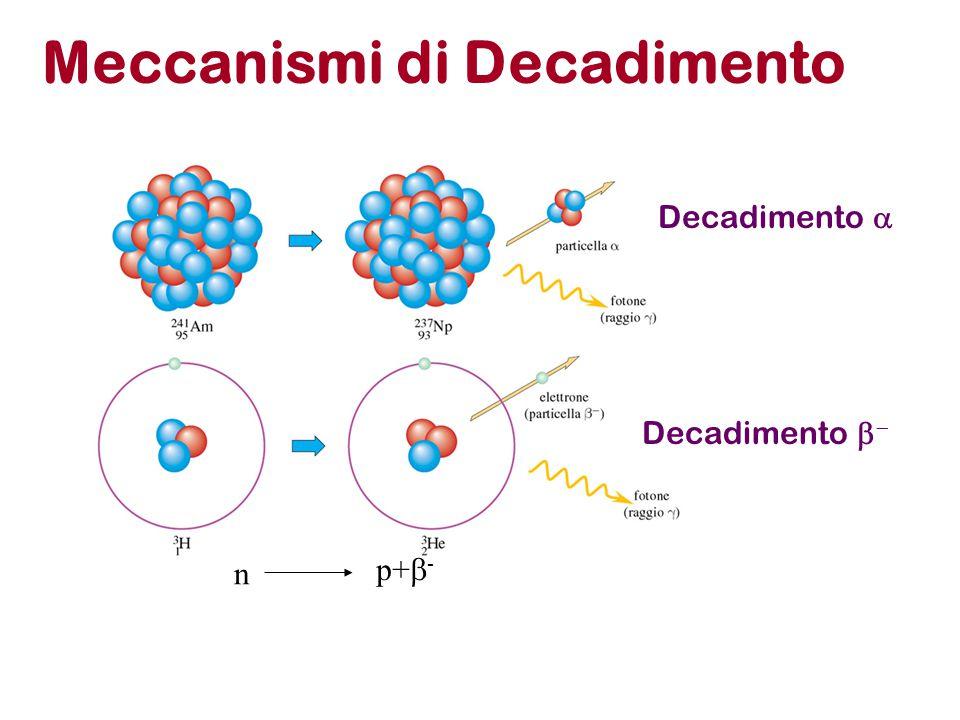 Meccanismi di Decadimento Decadimento  Decadimento   n p+  -