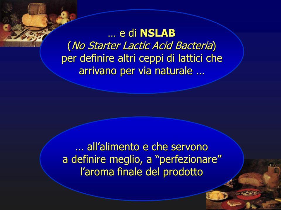… e di NSLAB (No Starter Lactic Acid Bacteria) per definire altri ceppi di lattici che arrivano per via naturale … … all'alimento e che servono a defi
