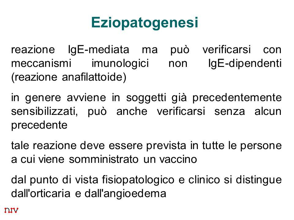 25 Eziopatogenesi reazione IgE-mediata ma può verificarsi con meccanismi imunologici non IgE-dipendenti (reazione anafilattoide) in genere avviene in