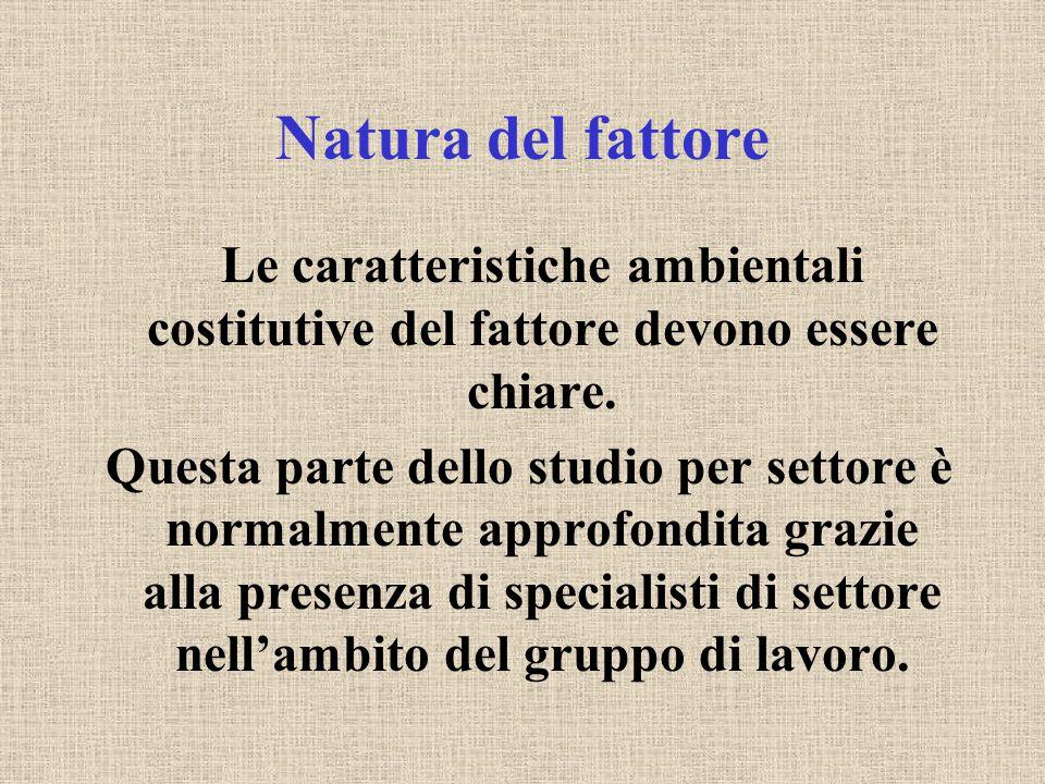 Natura del fattore Le caratteristiche ambientali costitutive del fattore devono essere chiare. Questa parte dello studio per settore è normalmente app