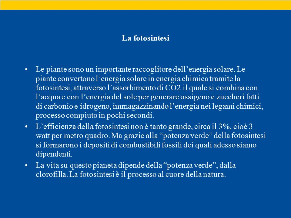 La fotosintesi Le piante sono un importante raccoglitore dell'energia solare.