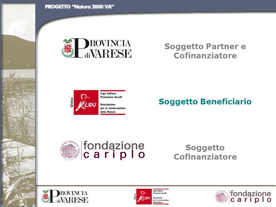Soggetto Partner e Cofinanziatore Soggetto Beneficiario Soggetto Cofinanziatore