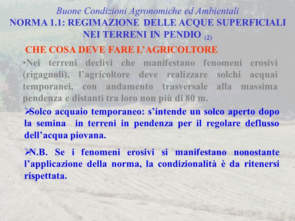 Buone Condizioni Agronomiche ed Ambientali NORMA 1.1: REGIMAZIONE DELLE ACQUE SUPERFICIALI NEI TERRENI IN PENDIO (2) CHE COSA DEVE FARE L'AGRICOLTORE