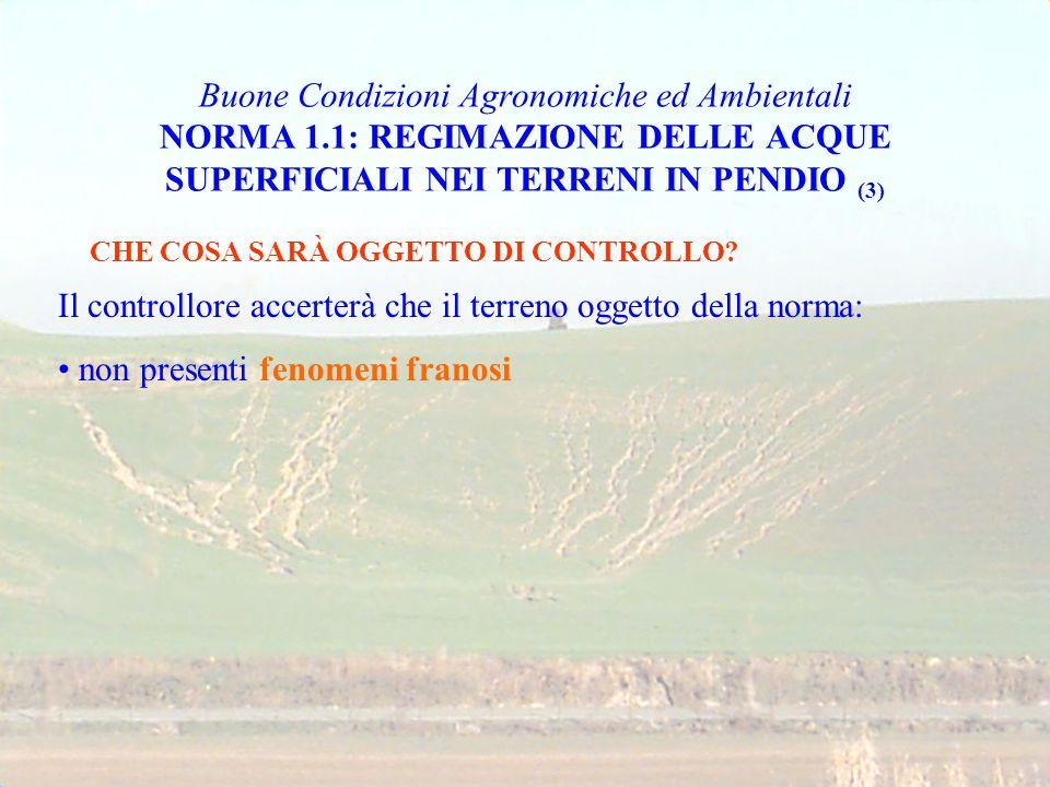 Buone Condizioni Agronomiche ed Ambientali NORMA 1.1: REGIMAZIONE DELLE ACQUE SUPERFICIALI NEI TERRENI IN PENDIO (3) CHE COSA SARÀ OGGETTO DI CONTROLL